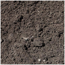 Bubba's Dirt And Landscape Supplies Sandy Loam